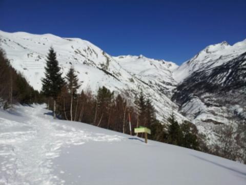 En invierno con raquetas de nieve